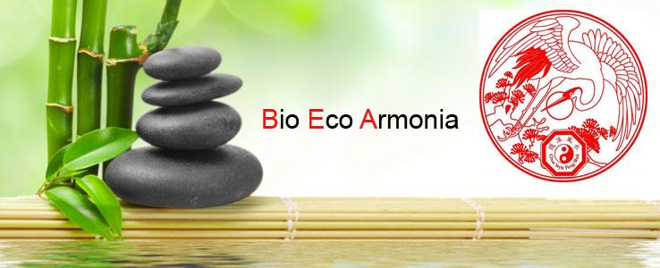 bambu sito con logo copy