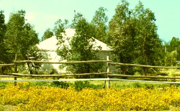 la yurta dall'esterno