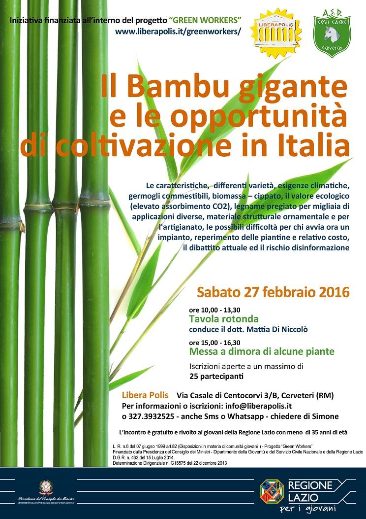 Variet Di Bamb.Il Bambu Gigante Ed I Suoi Germogli Commestibili Libera Polis
