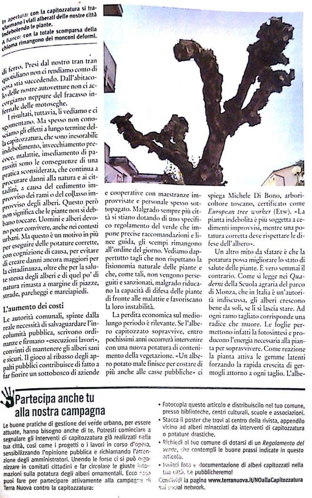 Capitozzatura (articolo terranuova)_2